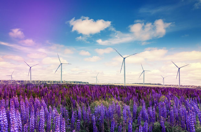 Renewables Footer CTA